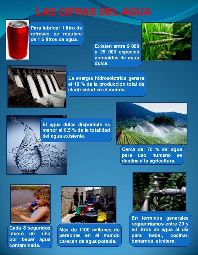 LAS CIFRAS DEL AGUA Para fabricar 1 litro de refresco se requiere de 1.5 litros de agua. Existen entre 9 000 y 25 000 espe...