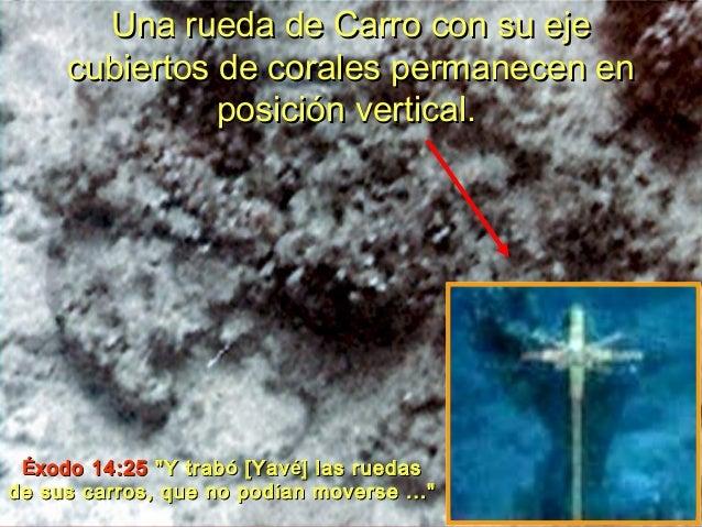 Cd cross mar del plata - 1 3