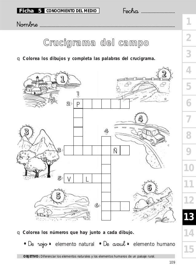 Crucigrama Del Campo