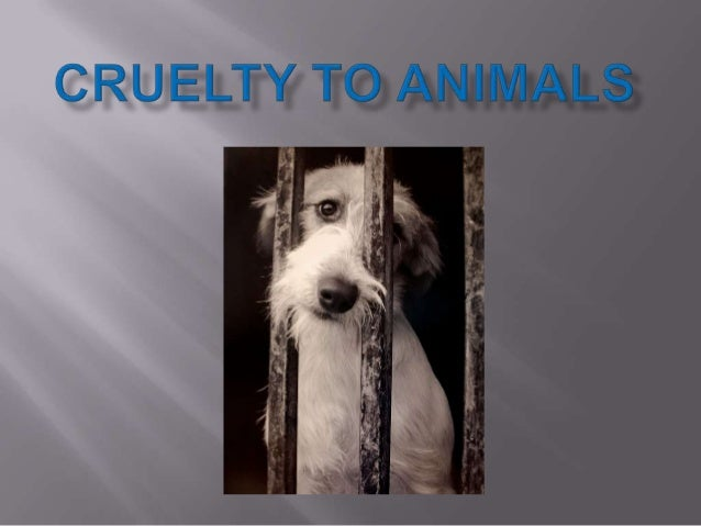 Cruelty to animals is a majorconcern that is sometimes notgiven the importance it deserves.