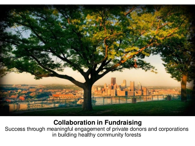 Collaboration in Fundraising Success through meaningful engagement of private donors and corporations in building healthy ...