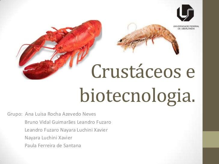 Crustáceos e                             biotecnologia.Grupo: Ana Luisa Rocha Azevedo Neves       Bruno Vidal Guimarães Le...