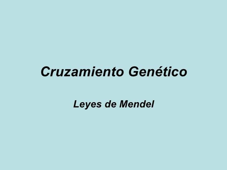 Cruzamiento Genético Leyes de Mendel