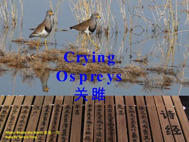Music: Beside the Water 在水一方 Sung by Teresa Teng Crying Ospreys 关雎