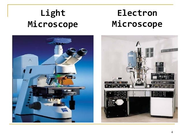 cryo electron microscopy