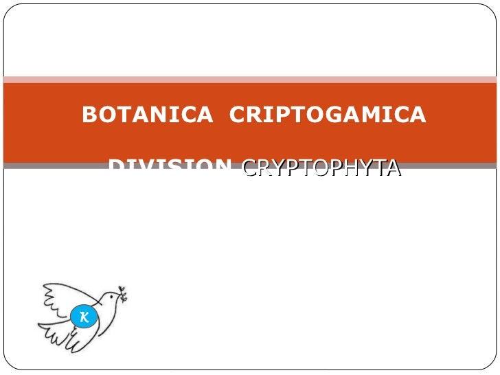 BOTANICA  CRIPTOGAMICA DIVISION  CRYPTOPHYTA K