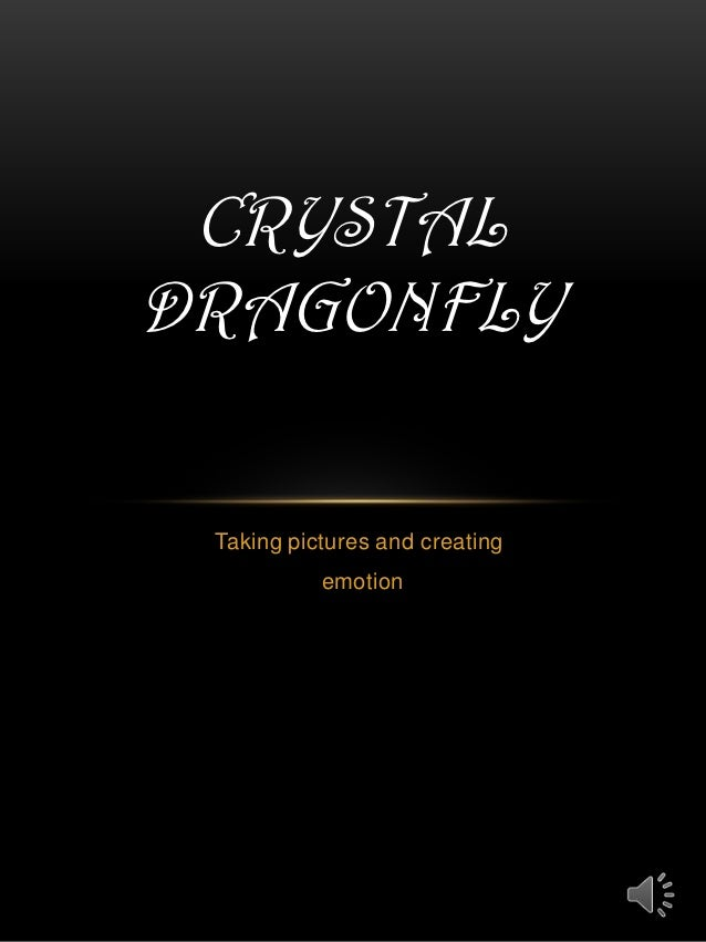CRYSTALDRAGONFLY Taking pictures and creating           emotion