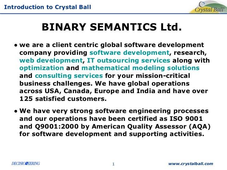 BINARY SEMANTICS Ltd.  <ul><li>we are a client centric global software development company providing  software development...
