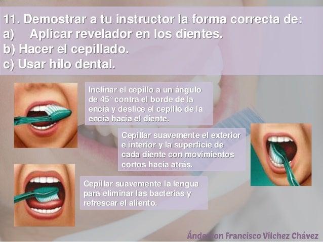 11. Demostrar a tu instructor la forma correcta de: a) Aplicar revelador en los dientes. b) Hacer el cepillado. c) Usar hi...