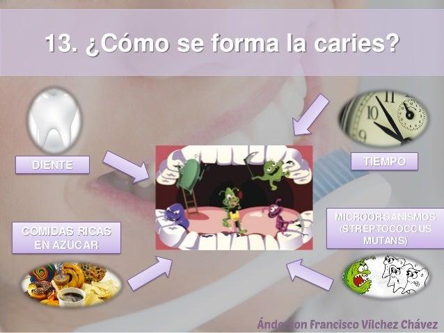 13. ¿Cómo se forma la caries? DIENTE COMIDAS RICAS EN AZÚCAR TIEMPO MICROORGANISMOS (STREPTOCOCCUS MUTANS)