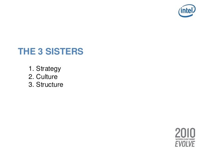 THE 3 SISTERS 1. Strategy 2. Culture 3. Structure THE 3 TWINS 1. Consumer Intimacy 2. Executional Excellence 3. Meaningful...