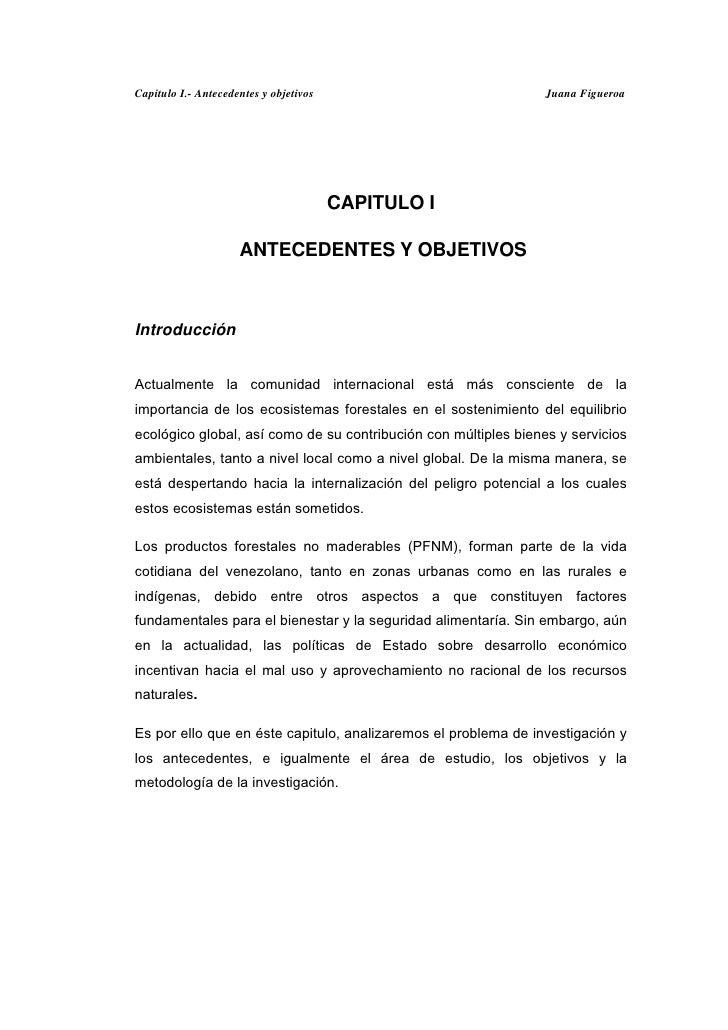Capitulo I.- Antecedentes y objetivos                            Juana Figueroa                                        CAP...