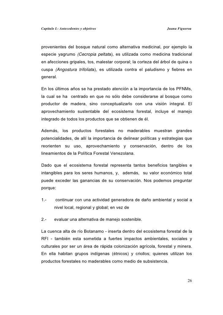 Capitulo I.- Antecedentes y objetivos                            Juana Figueroaprovenientes del bosque natural como altern...