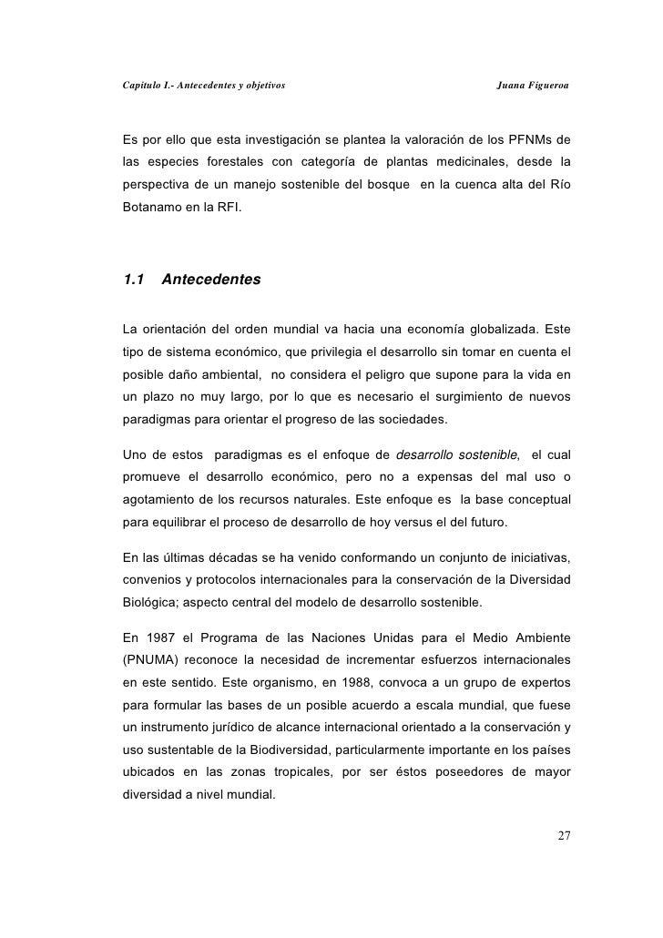 Capitulo I.- Antecedentes y objetivos                              Juana FigueroaEs por ello que esta investigación se pla...