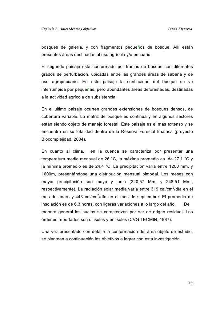 Capitulo I.- Antecedentes y objetivos                             Juana Figueroabosques de galería, y con fragmentos peque...