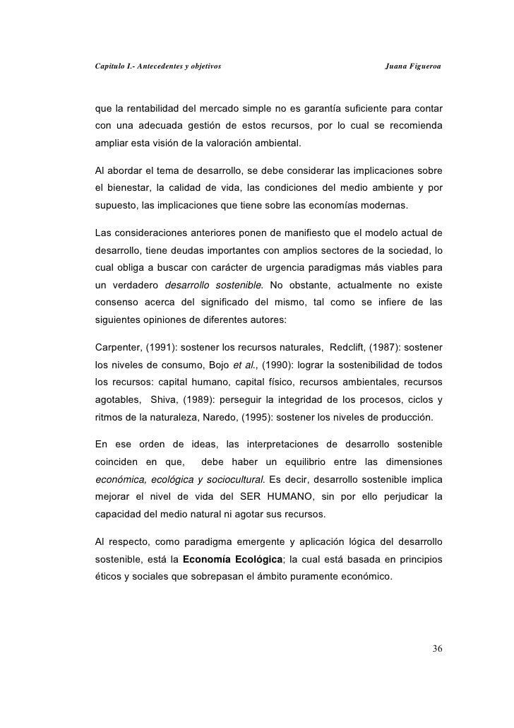 Capitulo I.- Antecedentes y objetivos                             Juana Figueroaque la rentabilidad del mercado simple no ...