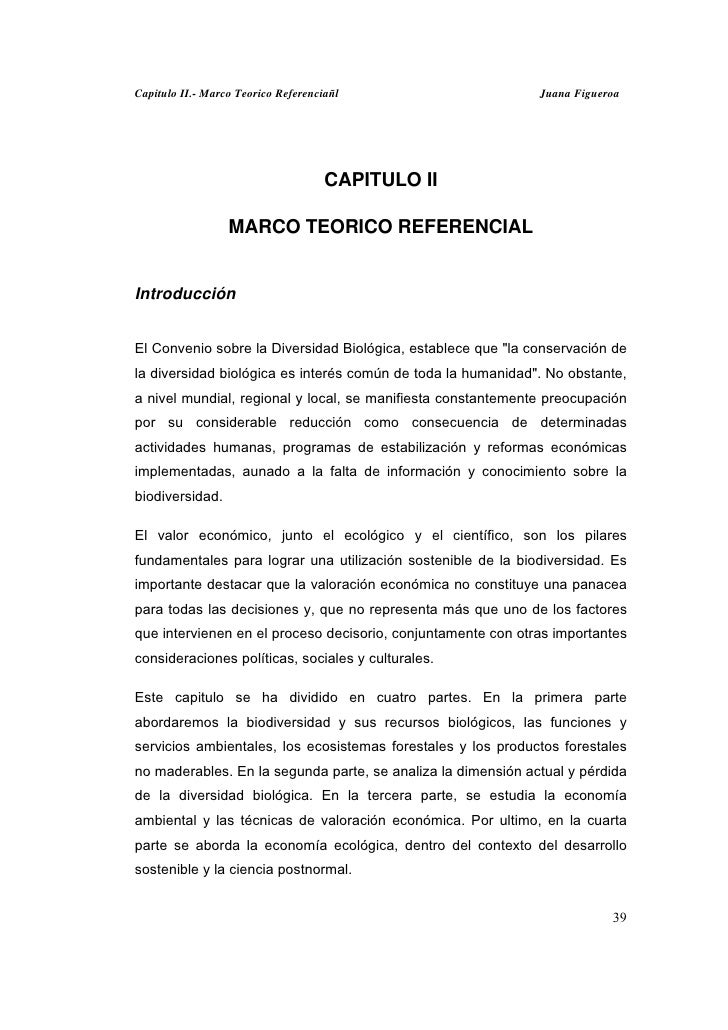 Capitulo II.- Marco Teorico Referenciañl                      Juana Figueroa                                     CAPITULO ...