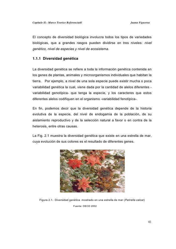 Capitulo II.- Marco Teorico Referenciañl                                   Juana FigueroaEl concepto de diversidad biológi...