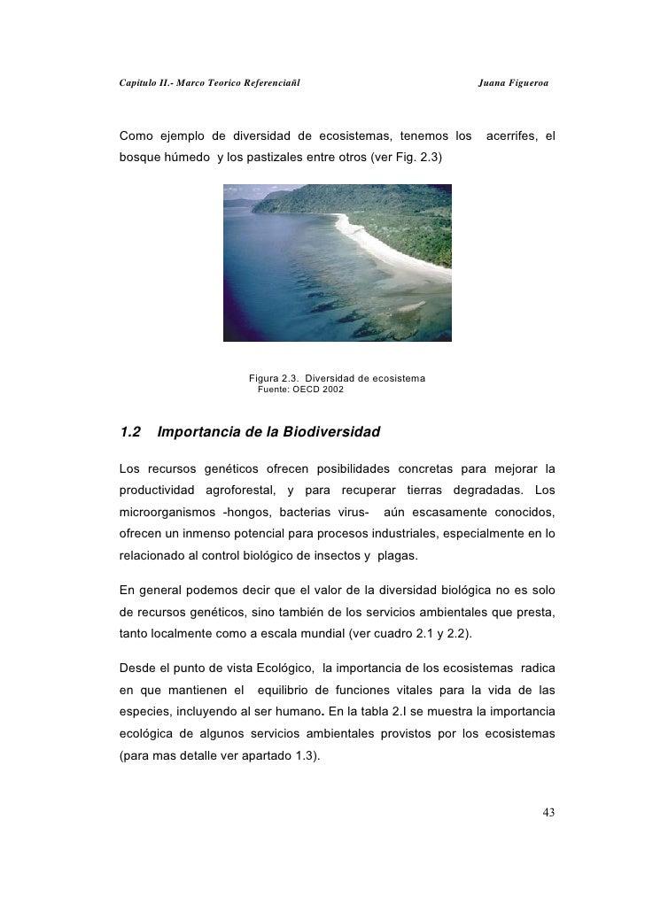 Capitulo II.- Marco Teorico Referenciañl                             Juana FigueroaComo ejemplo de diversidad de ecosistem...
