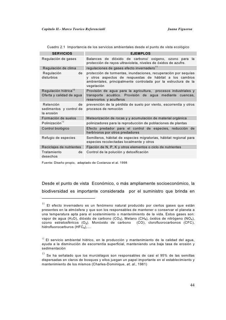 Capitulo II.- Marco Teorico Referenciañl                                     Juana Figueroa     Cuadro 2.1 Importancia de ...