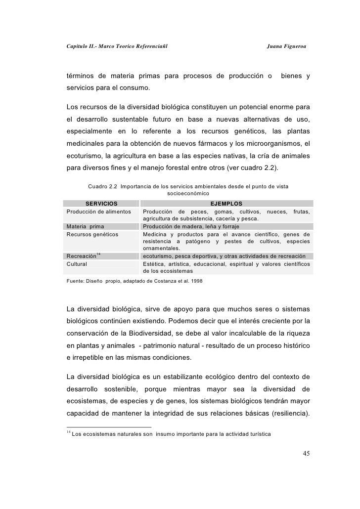 Capitulo II.- Marco Teorico Referenciañl                                       Juana Figueroatérminos de materia primas pa...