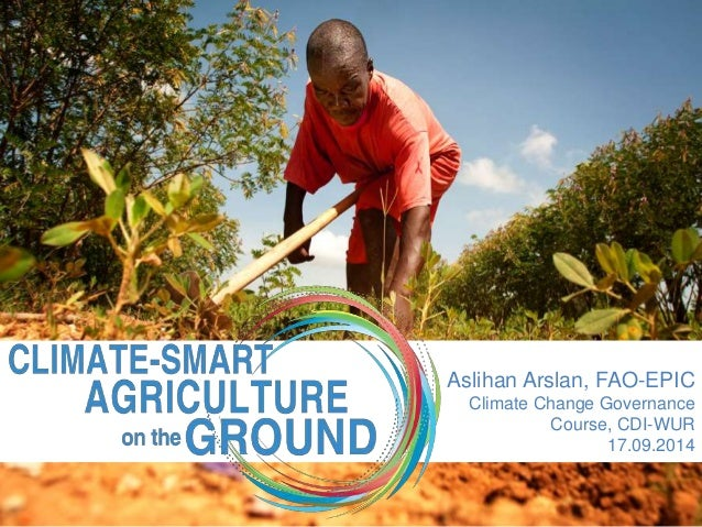 Aslihan Arslan, FAO-EPIC  Climate Change Governance  Course, CDI-WUR  17.09.2014