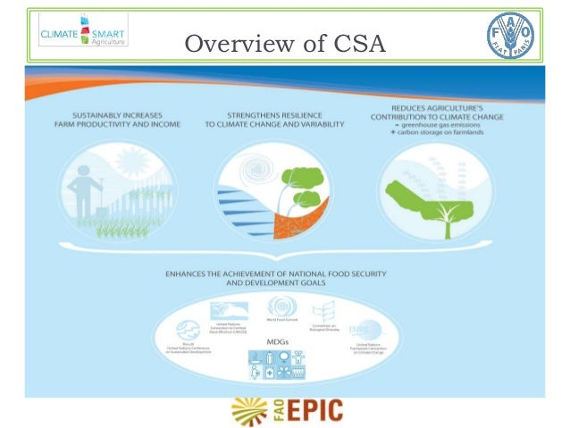 Overview of CSA