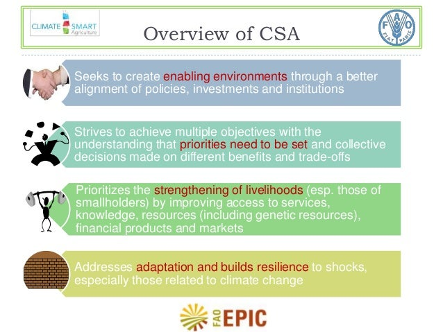 Overview of CSA  Seeks to create enabling environments through a better  alignment of policies, investments and institutio...