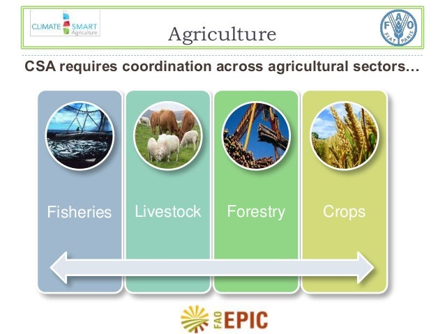 an overview of agriculture and food