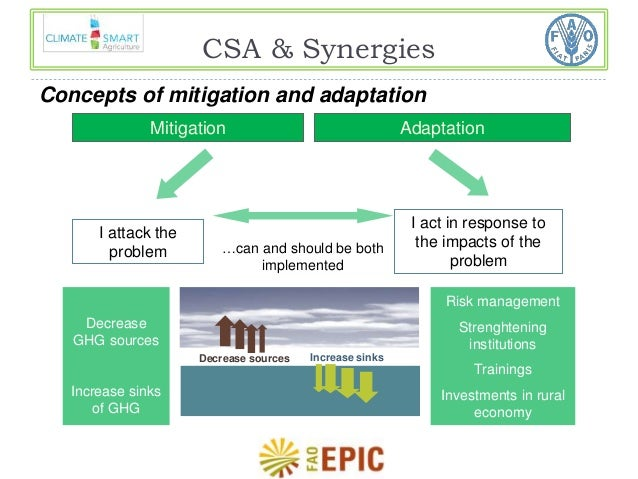 CSA & Synergies  Concepts of mitigation and adaptation  Mitigation Adaptation  I attack the  problem  I act in response to...