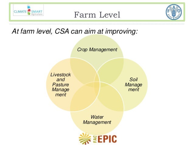 Farm Level  At farm level, CSA can aim at improving:  Crop Management  Soil  Manage  ment  Water  Management  Livestock  a...