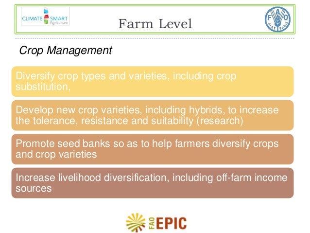Farm Level  Crop Management  Diversify crop types and varieties, including crop  substitution,  Develop new crop varieties...