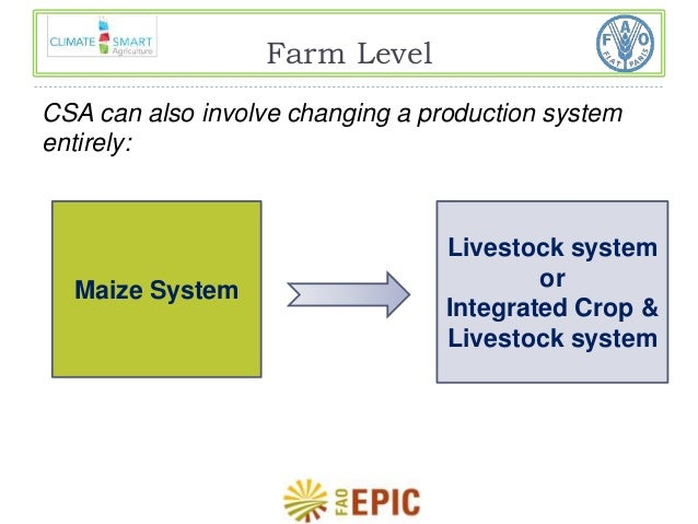 Farm Level  CSA can also involve changing a production system  entirely:  Maize System  Livestock system  or  Integrated C...