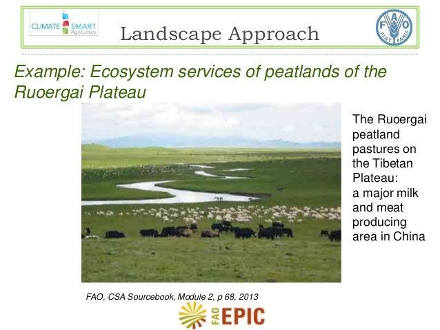 Landscape Approach  Example: Ecosystem services of peatlands of the  Ruoergai Plateau  The Ruoergai  peatland  pastures on...