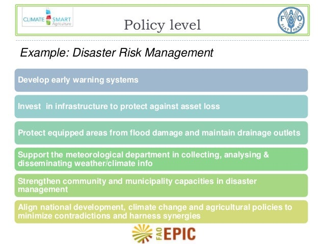 Policy level  Example: Disaster Risk Management  Develop early warning systems  Invest in infrastructure to protect agains...