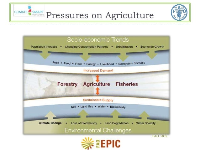 Pressures on Agriculture  FAO, 2009.