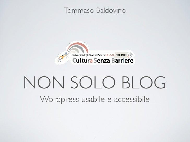 Tommaso Baldovino     NON SOLO BLOG  Wordpress usabile e accessibile                    1