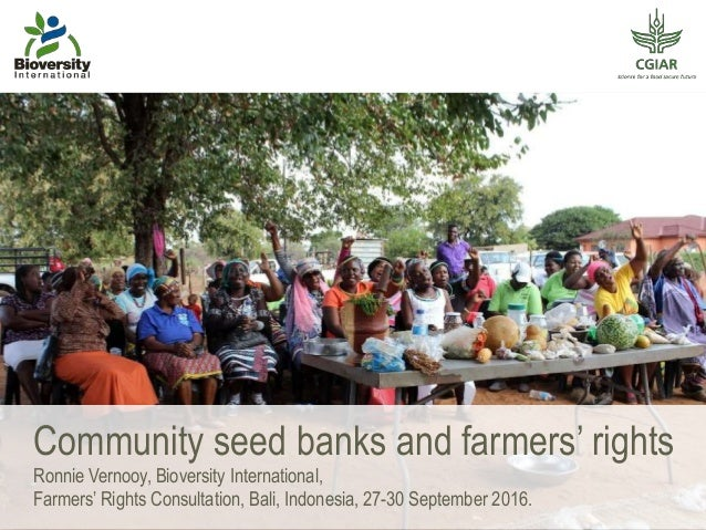 Community seed banks and farmers' rights Ronnie Vernooy, Bioversity International, Farmers' Rights Consultation, Bali, Ind...
