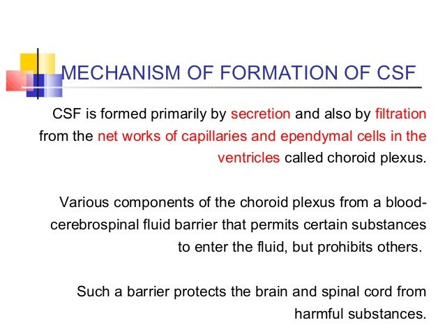 csf formation and circulation pdf