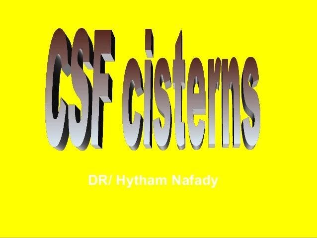 DR/ Hytham Nafady