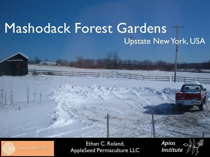 Mashodack Forest Gardens                              Upstate New York, USA                    Ethan C. Roland,       Apio...
