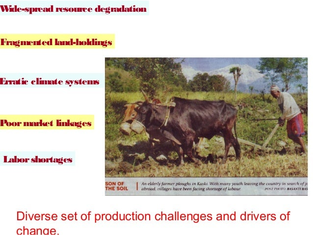 Wide-spread resource degradationFragmented land-holdingsErratic climate systemsPoor market linkagesLabor shortages    Dive...
