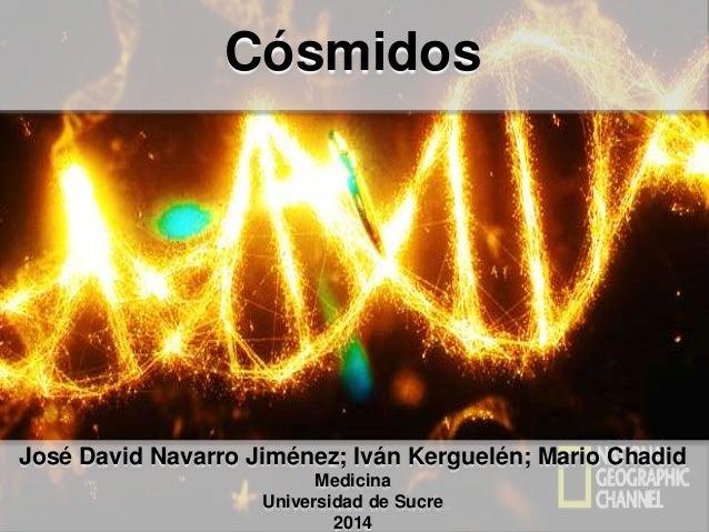 Cósmidos José David Navarro Jiménez; Iván Kerguelén; Mario Chadid Medicina Universidad de Sucre 2014