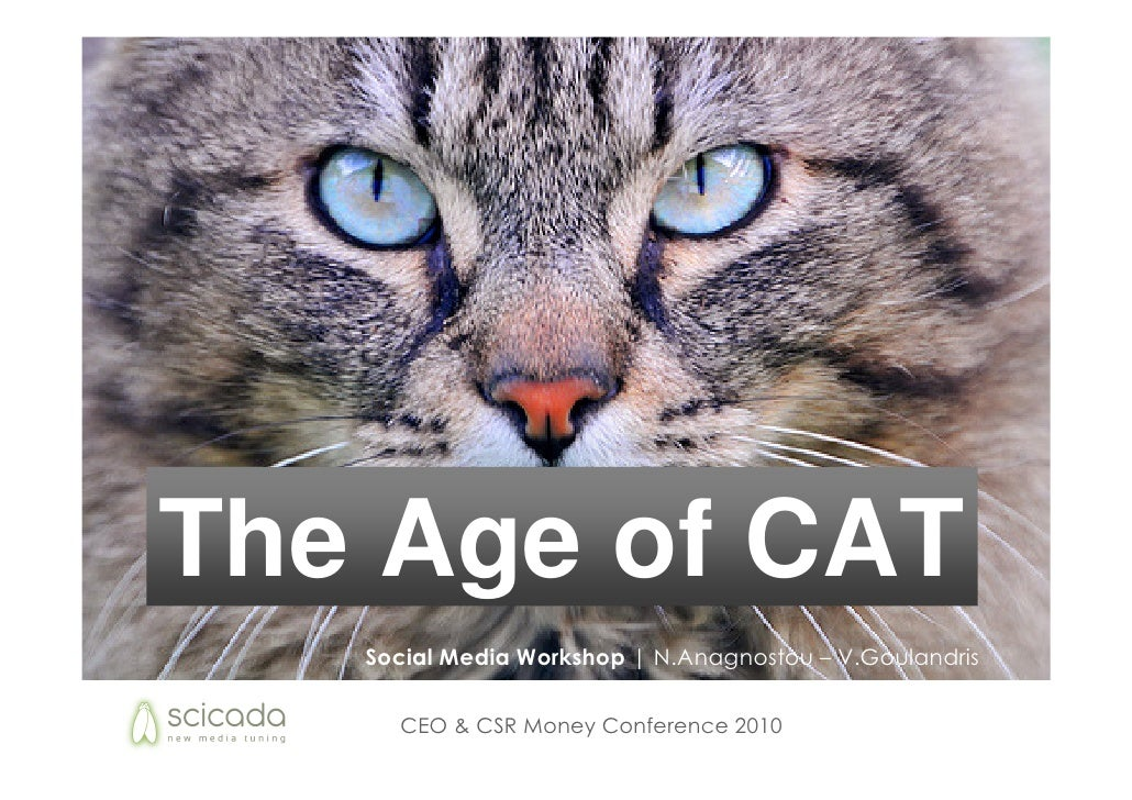 The Age of CAT    Social Media Workshop | N.Anagnostou – V.Goulandris       CEO & CSR Money Conference 2010