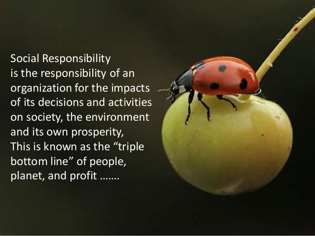Corporate Social Responsibility of Private Companies in Natural Disasters