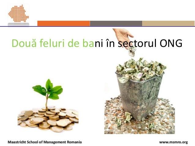 www.msmro.orgMaastricht School of Management Romania Două feluri de bani în sectorul ONG