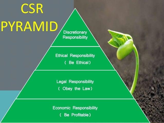 Importance Of Csr