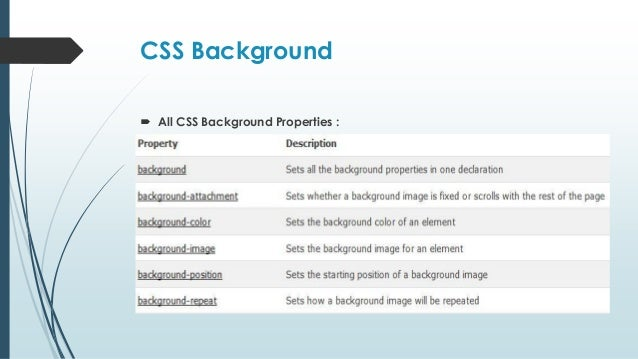 Css From Scratch