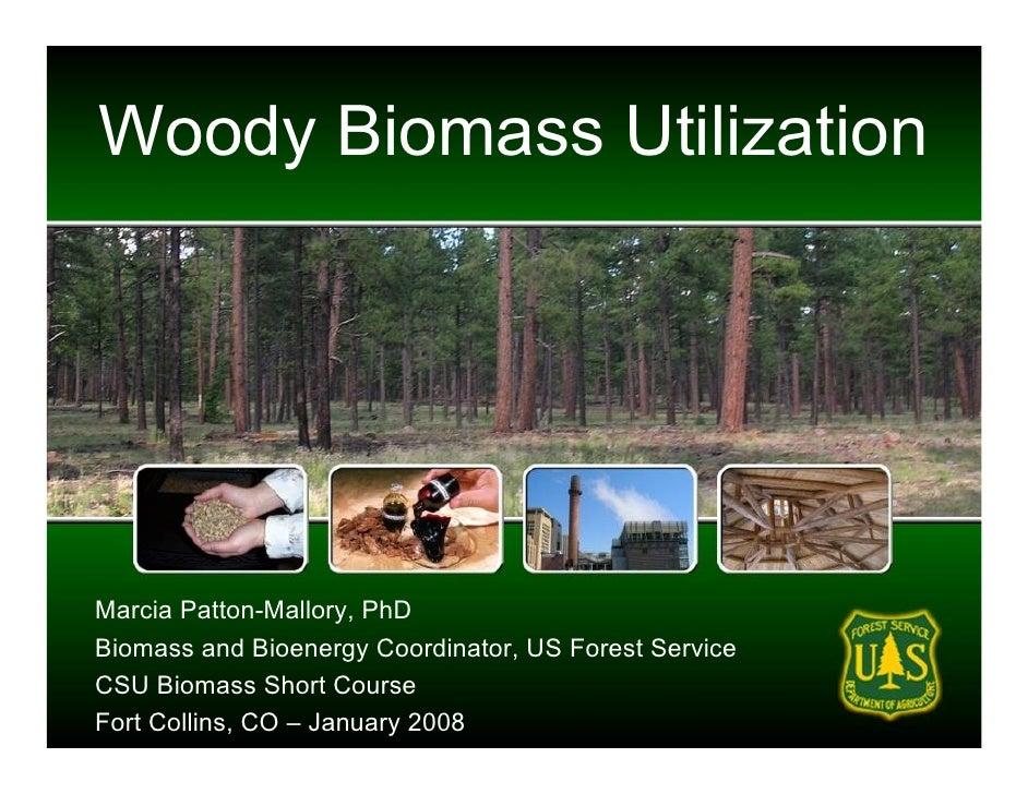 Woody Biomass Utilization     Marcia Patton-Mallory, PhD Biomass and Bioenergy Coordinator, US Forest Service CSU Biomass ...