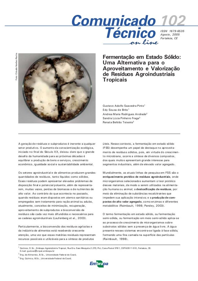 102ISSN 1679-6535 Agosto, 2005 Fortaleza, CE Foto:CláudioNorõesRocha on line (A) 1 Químico, D.Sc., Embrapa Agroindústria T...
